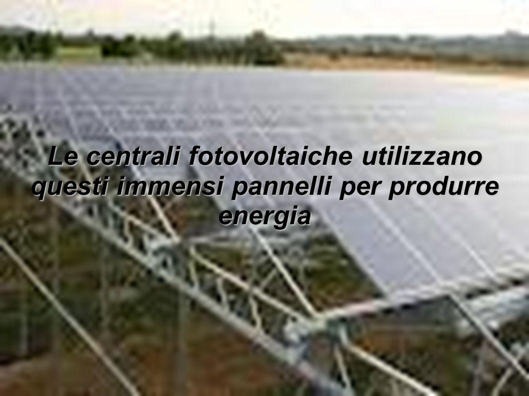 Le centrali fotovoltaiche utilizzano questi immensi pannelli per produrre energia