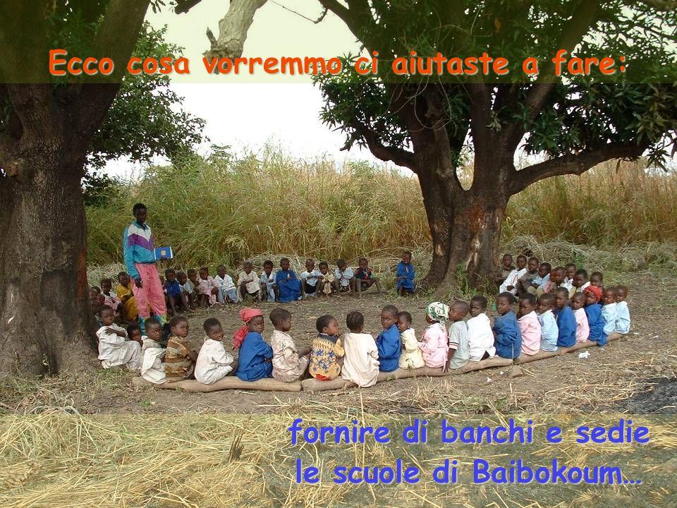 Ecco cosa vorremmo ci aiutaste a fare: fornire di banchi e sedie le scuole di Baibokoum…