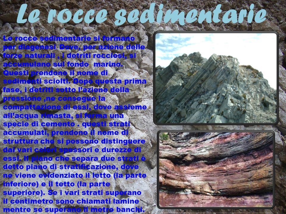 Le rocce sedimentarie Le rocce sedimentarie si formano per diagenesi. Dove, per azione delle forze naturali, i detriti rocciosi, si accumulano sul fon