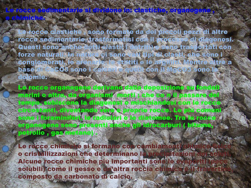 Le rocce sedimentarie si dividono in: clastiche, organogene, e chimiche. Le rocce clastiche, sono formate da dei piccoli pezzi di altre rocce sediment
