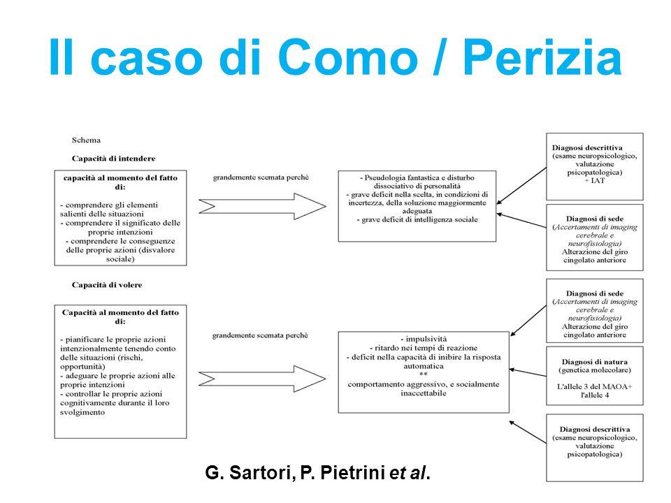 Il caso di Como / Perizia G. Sartori, P. Pietrini et al.