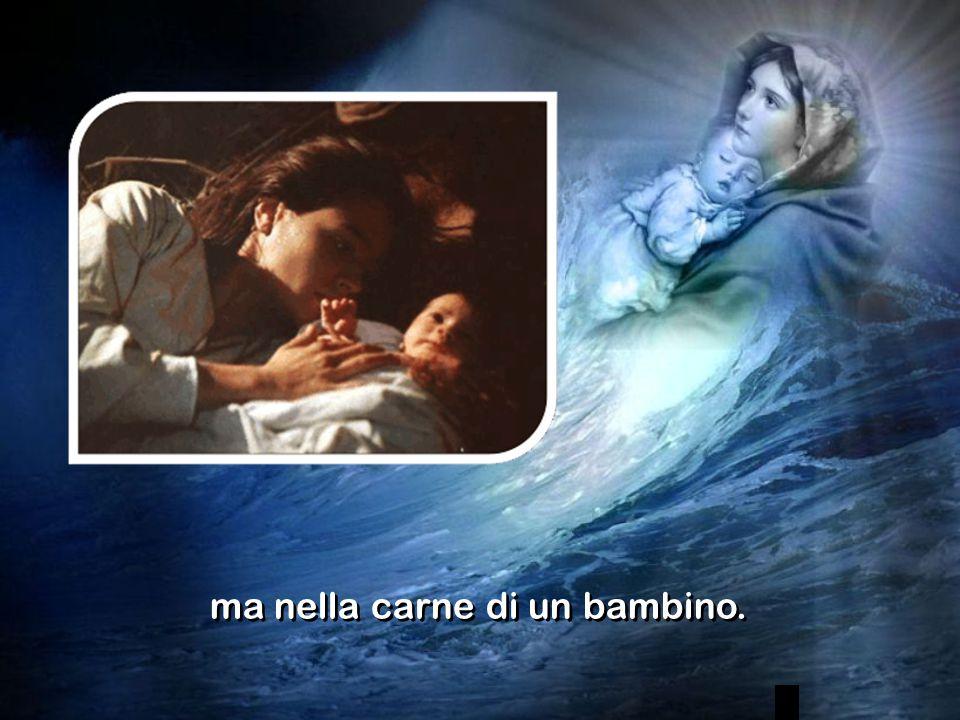 Riuscite a capire la gioia che ci dà il vedere ad ogni Battesimo la carne di un nostro bambino farsi carne di Dio.