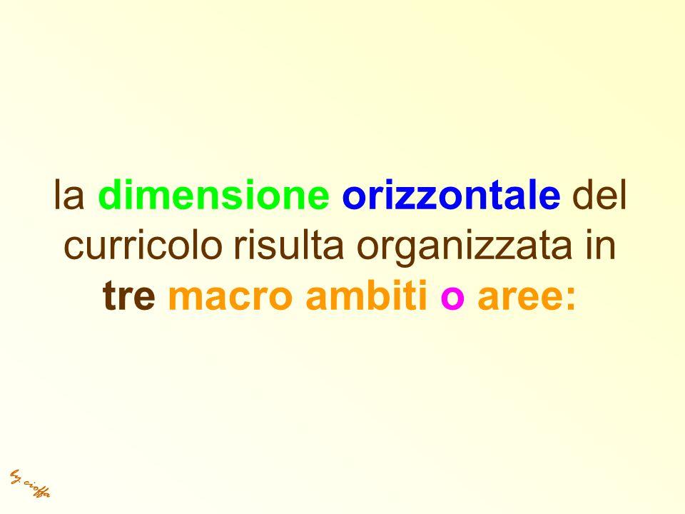 by cioffa la dimensione orizzontale del curricolo risulta organizzata in tre macro ambiti o aree: