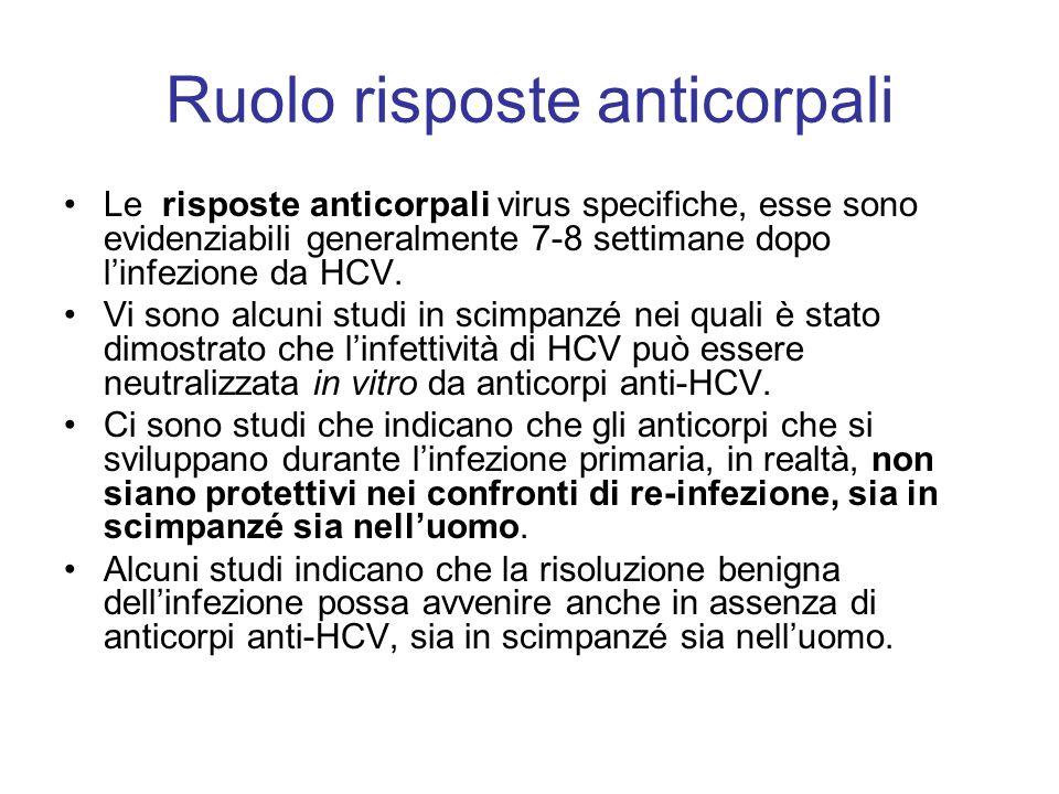Ruolo risposte anticorpali Le risposte anticorpali virus specifiche, esse sono evidenziabili generalmente 7-8 settimane dopo l'infezione da HCV. Vi so
