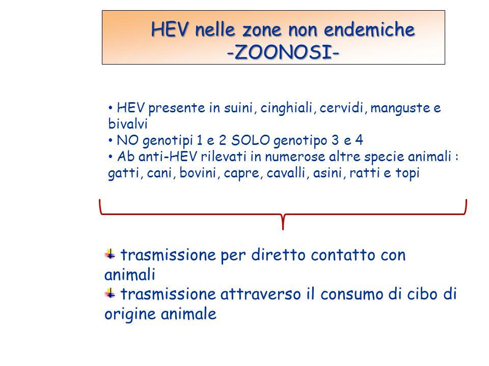 HEV nelle zone non endemiche -ZOONOSI- HEV presente in suini, cinghiali, cervidi, manguste e bivalvi NO genotipi 1 e 2 SOLO genotipo 3 e 4 Ab anti-HEV