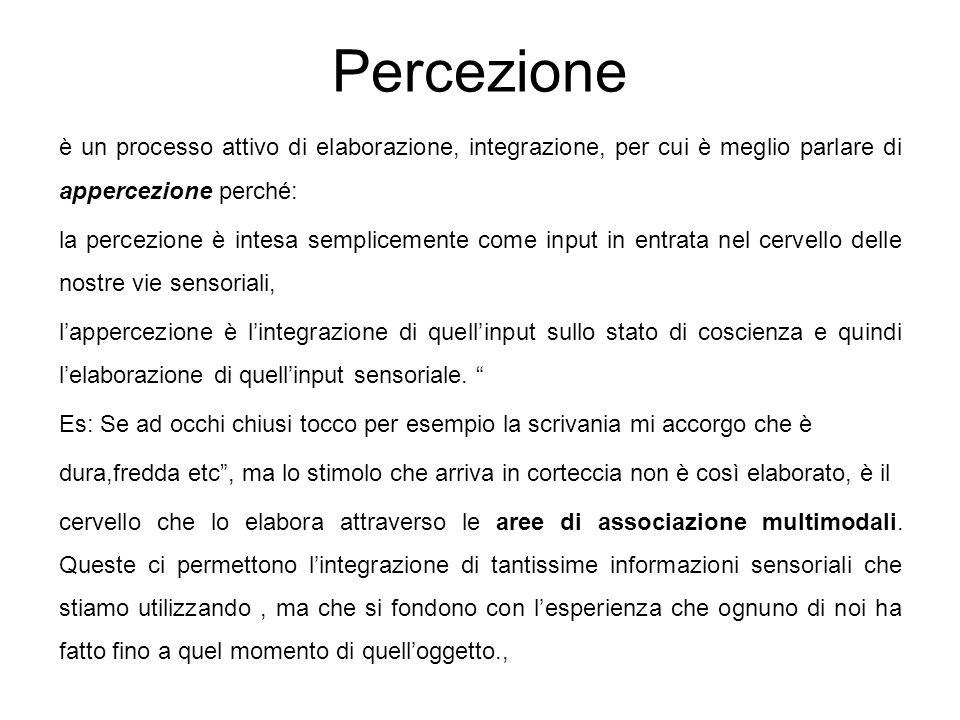 Percezione è un processo attivo di elaborazione, integrazione, per cui è meglio parlare di appercezione perché: la percezione è intesa semplicemente c