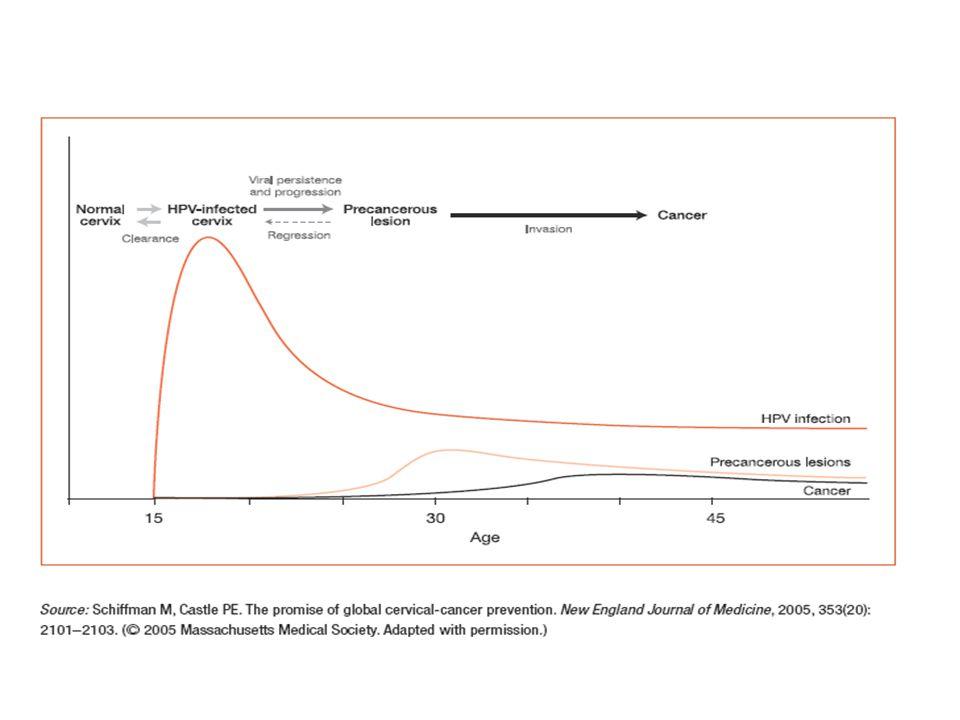 MorfologiaStadio Carcinoma squamoso Adeno carcinoma IA>IA RR0.78 (0.49-1.25) 0.31 (0.14-0.69) 0.58 (0.34-1.01) 0.56 (0.31-1.00) p eterogeneità tra studi 0% (p=0.84) 0% (p=0.59) 0% (p=0.82) 31.8% (p=0.22) Incidenza relativa (RR) di ICC con HPV vs pap test, per morfologia e stadio Study-adjusted RR ratio Adeno vs.