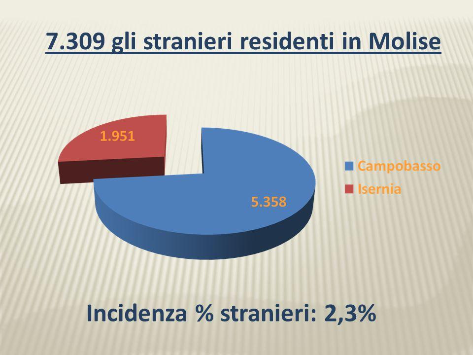 7.309 gli stranieri residenti in Molise Incidenza % stranieri: 2,3% Campobasso 5.358 Isernia 1.951 Molise 7.309