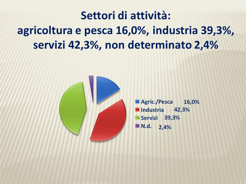 Settori di attività: agricoltura e pesca 16,0%, industria 39,3%, servizi 42,3%, non determinato 2,4%