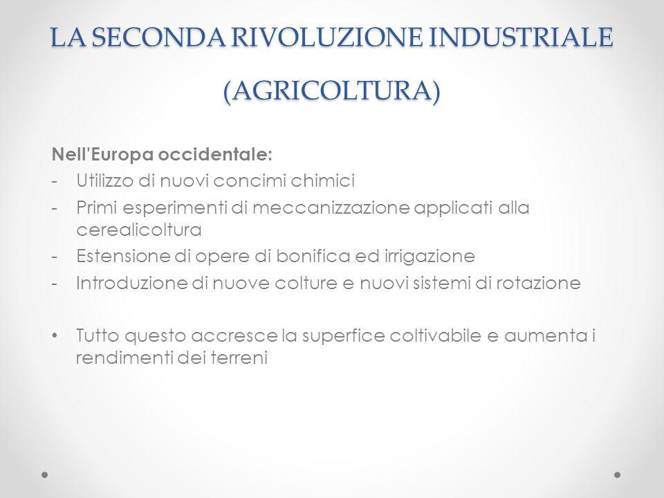 Nell'Europa occidentale: -Utilizzo di nuovi concimi chimici -Primi esperimenti di meccanizzazione applicati alla cerealicoltura -Estensione di opere d