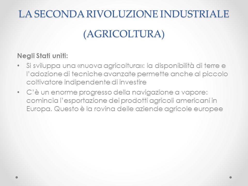 Negli Stati uniti: Si sviluppa una «nuova agricoltura»: la disponibilità di terre e l'adozione di tecniche avanzate permette anche al piccolo coltivat