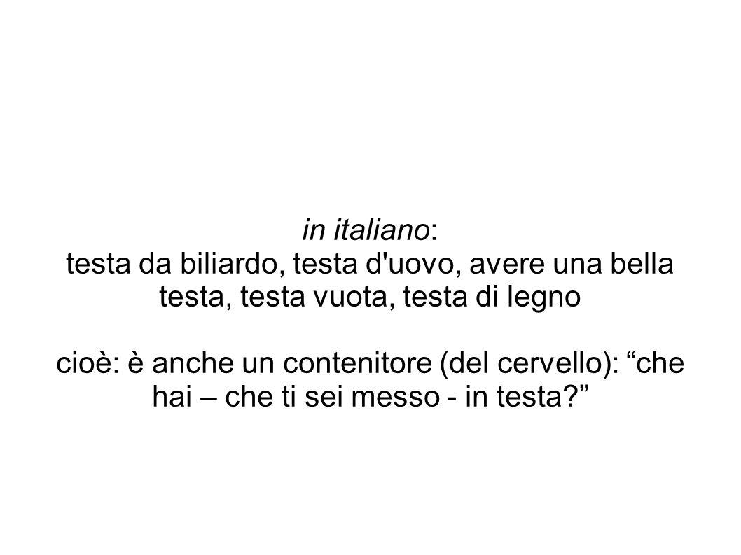 """in italiano: testa da biliardo, testa d'uovo, avere una bella testa, testa vuota, testa di legno cioè: è anche un contenitore (del cervello): """"che hai"""