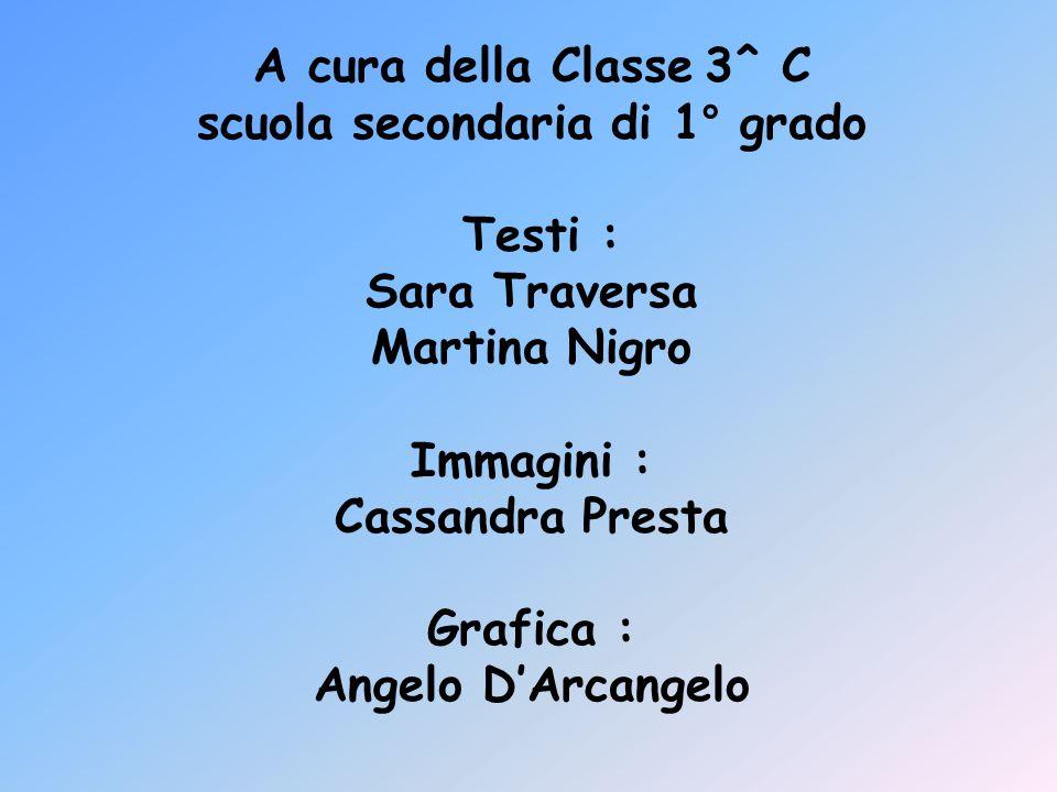 A cura della Classe 3^ C scuola secondaria di 1° grado Testi : Sara Traversa Martina Nigro Immagini : Cassandra Presta Grafica : Angelo D'Arcangelo