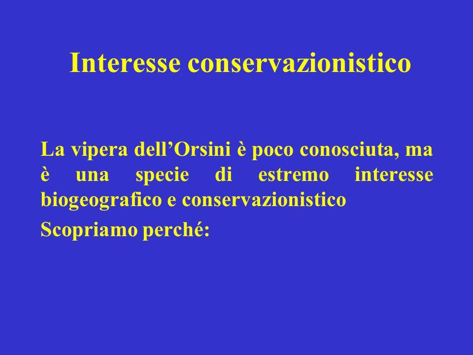 Interesse conservazionistico La vipera dell'Orsini è poco conosciuta, ma è una specie di estremo interesse biogeografico e conservazionistico Scopriam
