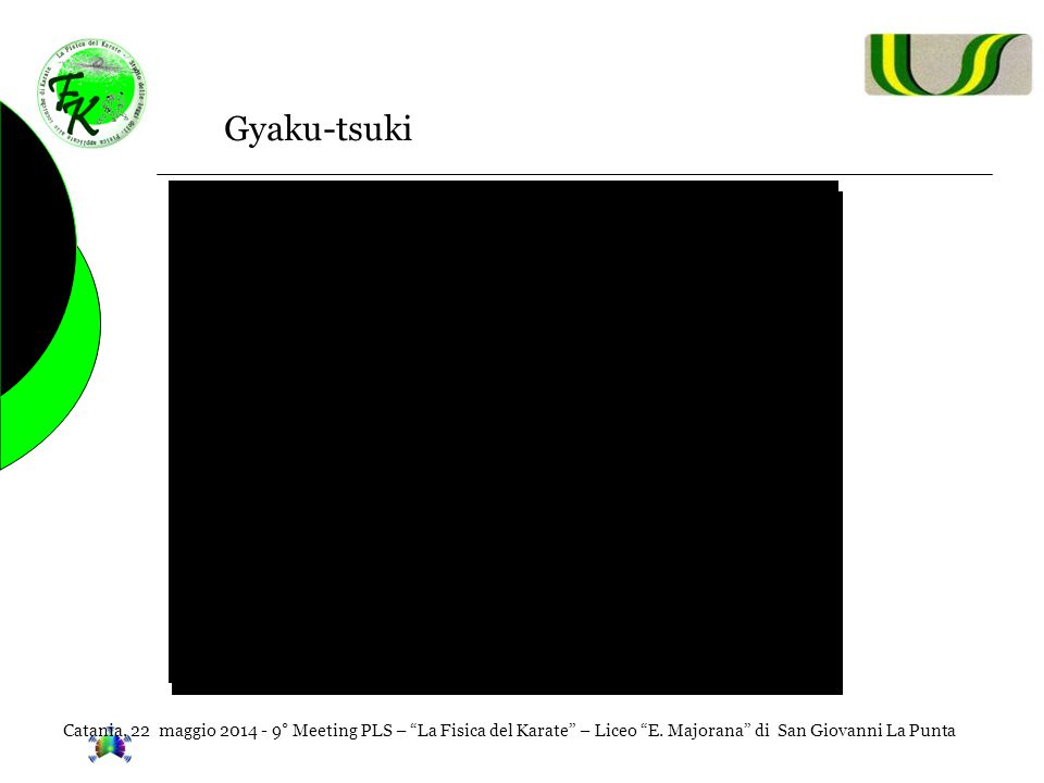 """Catania, 22 maggio 2014 - 9° Meeting PLS – """"La Fisica del Karate"""" – Liceo """"E. Majorana"""" di San Giovanni La Punta Gyaku-tsuki"""