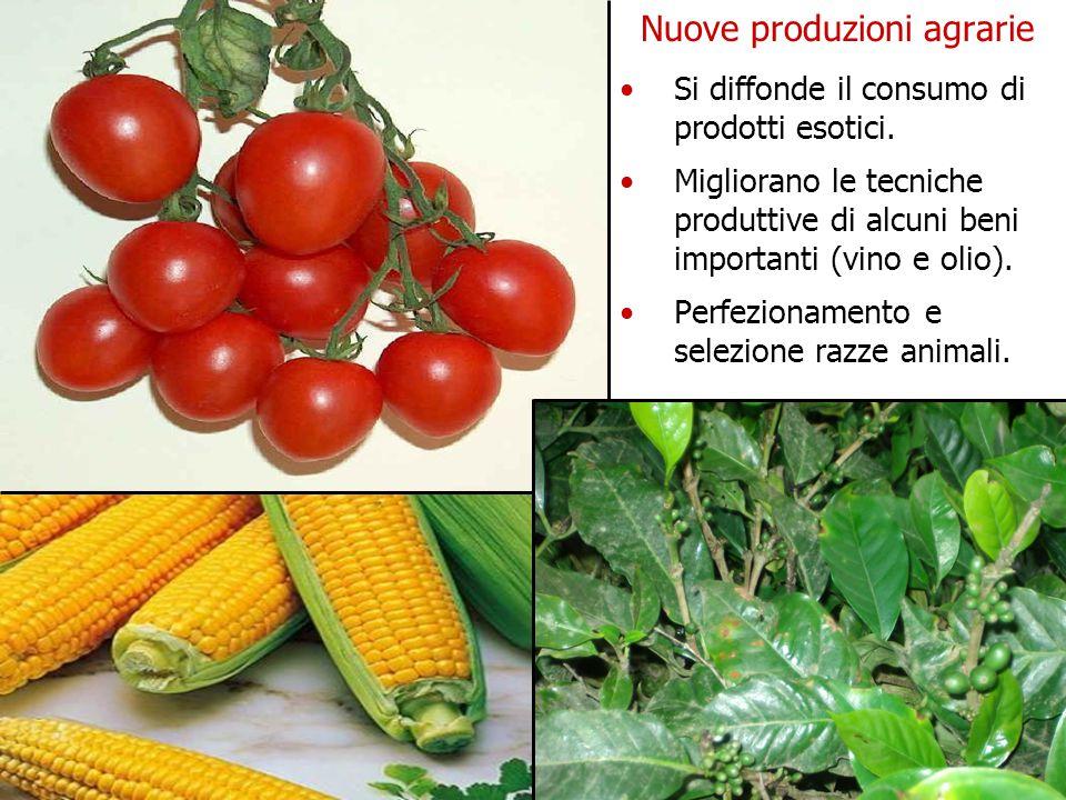 Nuove produzioni agrarie Si diffonde il consumo di prodotti esotici.