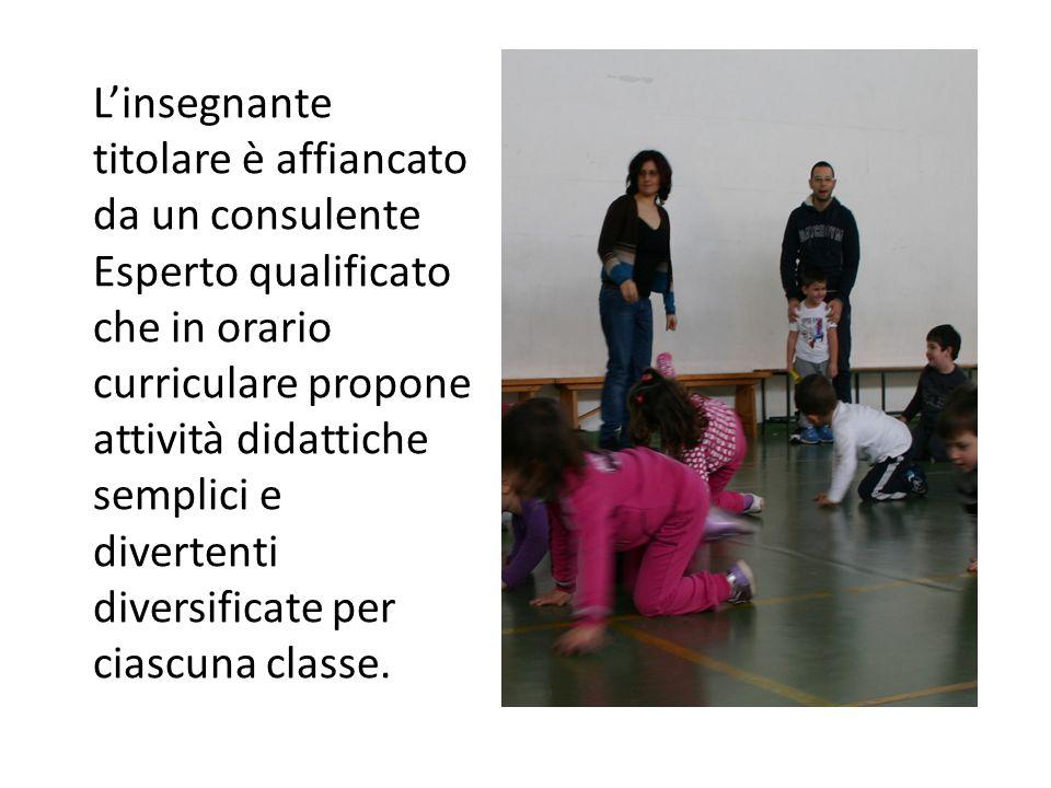 L'insegnante titolare è affiancato da un consulente Esperto qualificato che in orario curriculare propone attività didattiche semplici e divertenti di