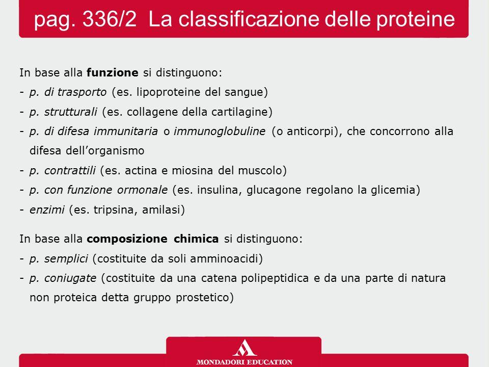 In base alla funzione si distinguono: -p. di trasporto (es. lipoproteine del sangue) -p. strutturali (es. collagene della cartilagine) -p. di difesa i