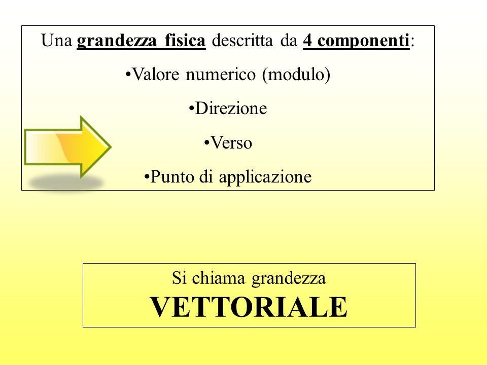 Una grandezza fisica descritta da 4 componenti: Valore numerico (modulo) Direzione Verso Punto di applicazione Si chiama grandezza VETTORIALE