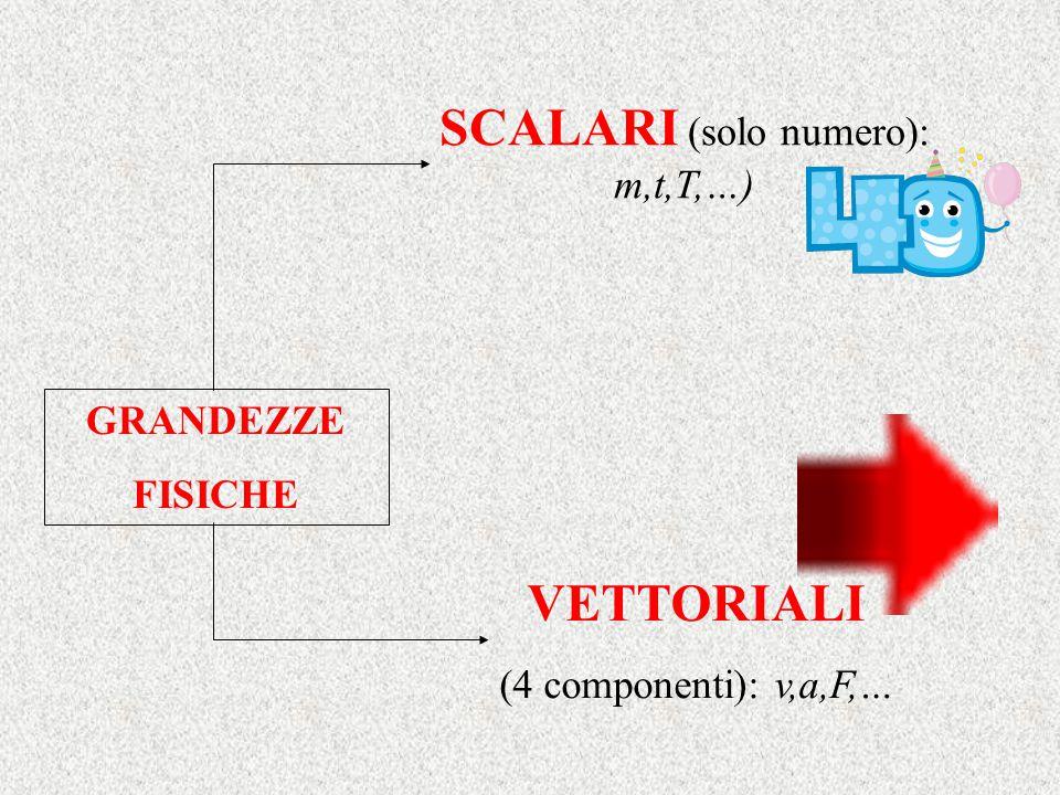 GRANDEZZE FISICHE SCALARI (solo numero): m,t,T,…) VETTORIALI (4 componenti): v,a,F,…