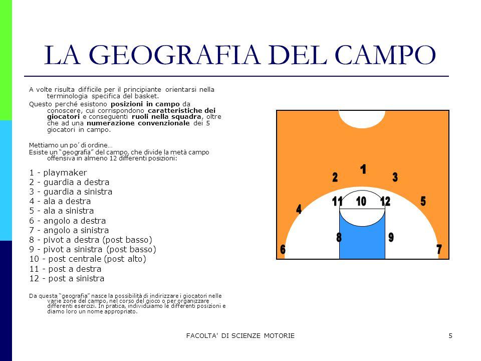 FACOLTA' DI SCIENZE MOTORIE5 LA GEOGRAFIA DEL CAMPO A volte risulta difficile per il principiante orientarsi nella terminologia specifica del basket.