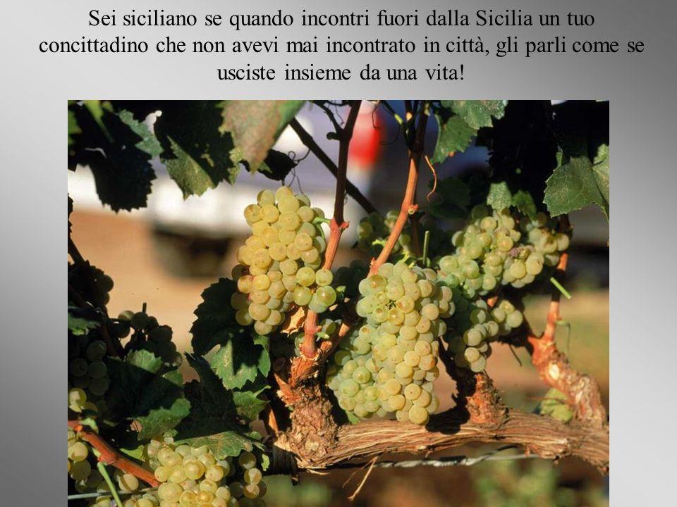 Sei siciliano quannu parri (parli) cu tutti!!!!!