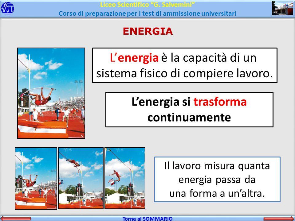 """Liceo Scientifico """"G. Salvemini"""" Corso di preparazione per i test di ammissione universitari Torna al SOMMARIO Torna al SOMMARIO ENERGIA L'energia è l"""