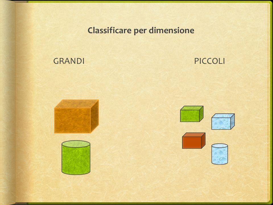 Classificare per dimensione GRANDI PICCOLI