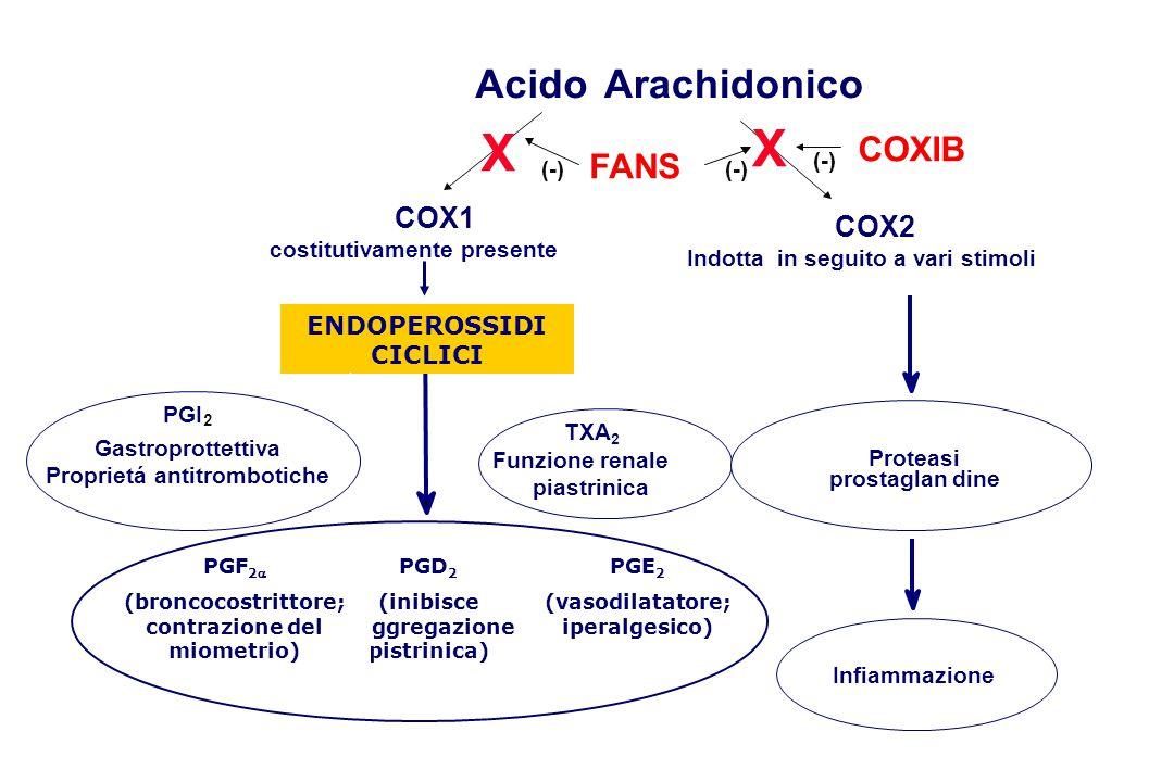 AcidoArachidonico COX1 costitutivamente presente FANS TXA 2 Funzione renale e piastrinica PGI 2 Gastroprottettiva Proprietá antitrombotiche X COX2 Ind