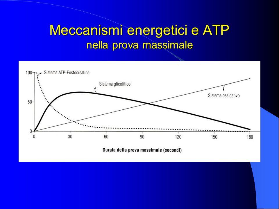 Meccanismi energetici e ATP nella prova massimale