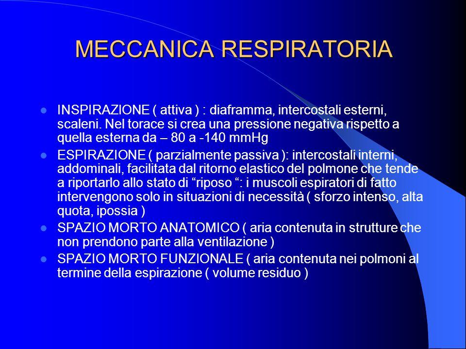 MECCANICA RESPIRATORIA INSPIRAZIONE ( attiva ) : diaframma, intercostali esterni, scaleni.