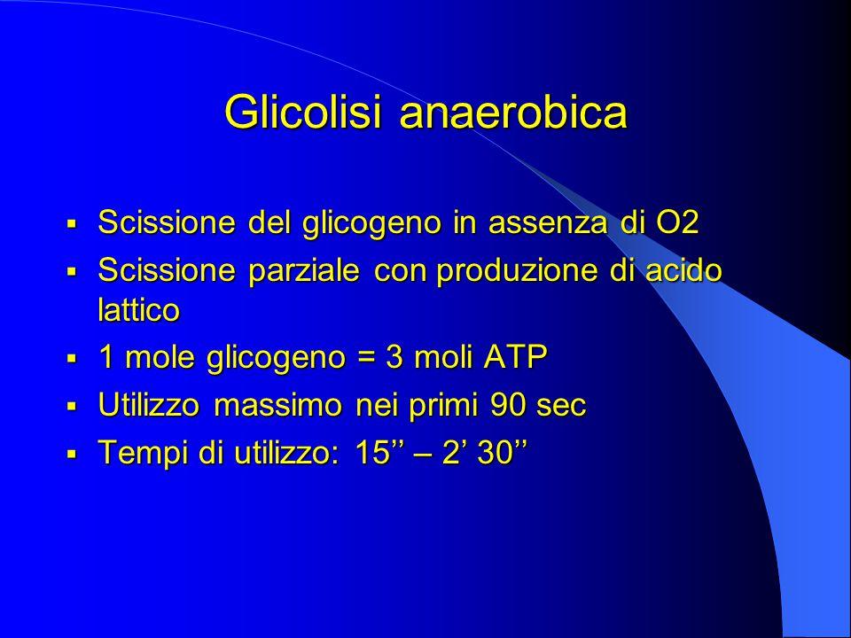 Glicolisi anaerobica  Scissione del glicogeno in assenza di O2  Scissione parziale con produzione di acido lattico  1 mole glicogeno = 3 moli ATP  Utilizzo massimo nei primi 90 sec  Tempi di utilizzo: 15'' – 2' 30''