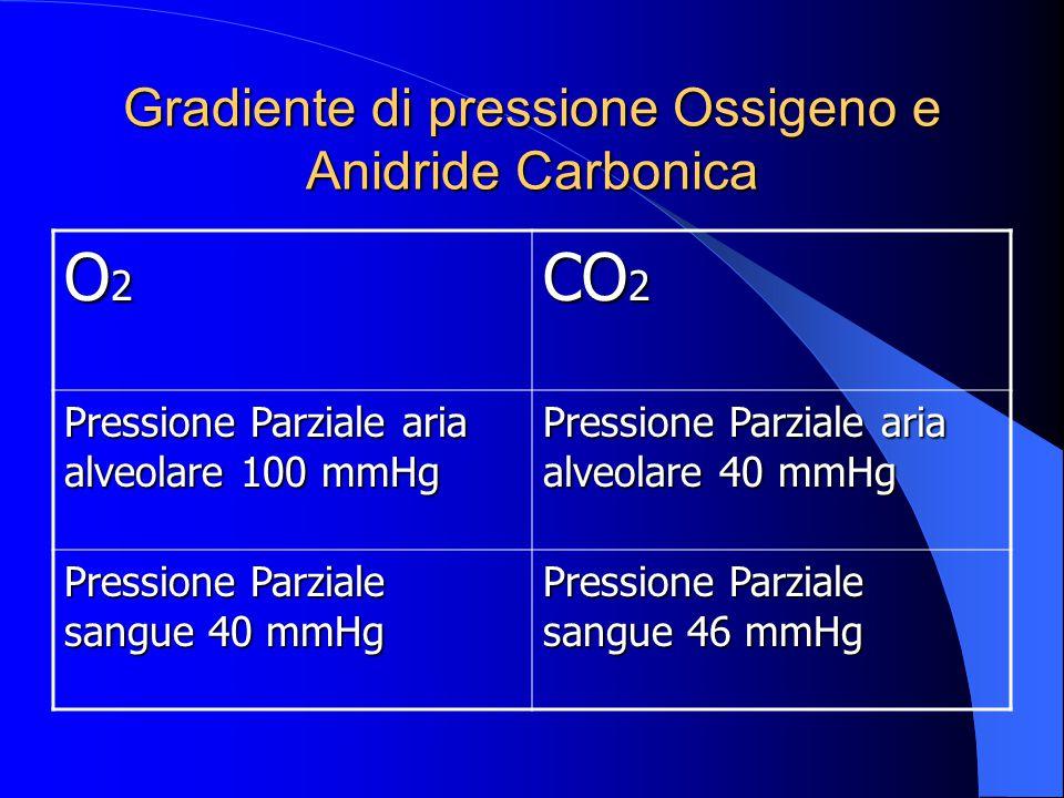 Gradiente di pressione Ossigeno e Anidride Carbonica O2O2O2O2 CO 2 Pressione Parziale aria alveolare 100 mmHg Pressione Parziale aria alveolare 40 mmHg Pressione Parziale sangue 40 mmHg Pressione Parziale sangue 46 mmHg