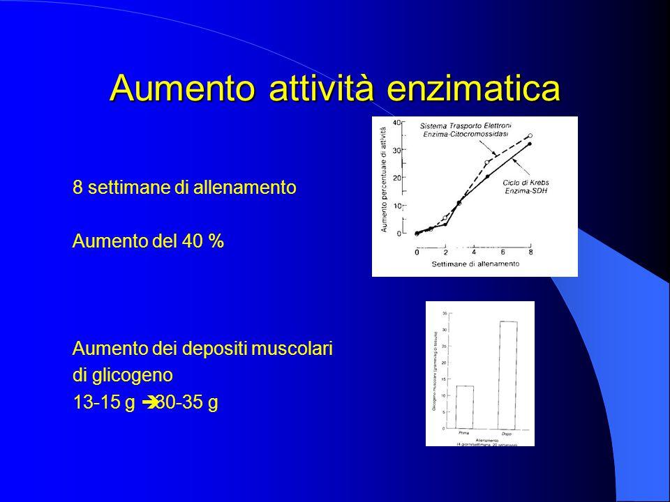 Aumento attività enzimatica 8 settimane di allenamento Aumento del 40 % Aumento dei depositi muscolari di glicogeno 13-15 g  30-35 g