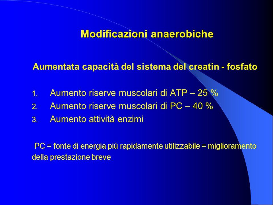 Modificazioni anaerobiche Aumentata capacità del sistema del creatin - fosfato 1.