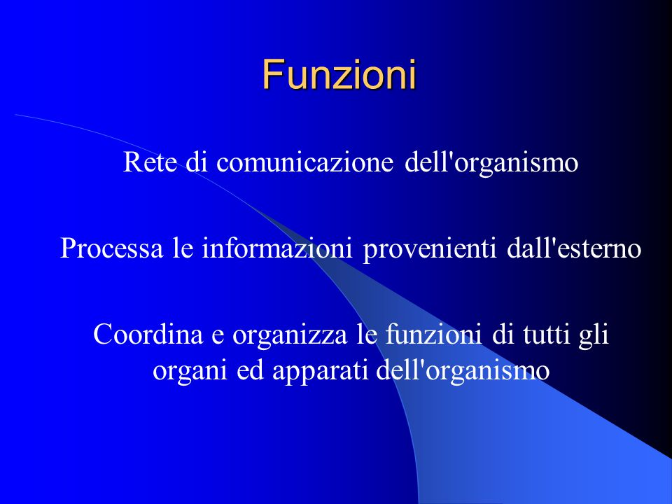 Funzioni Rete di comunicazione dell organismo Processa le informazioni provenienti dall esterno Coordina e organizza le funzioni di tutti gli organi ed apparati dell organismo