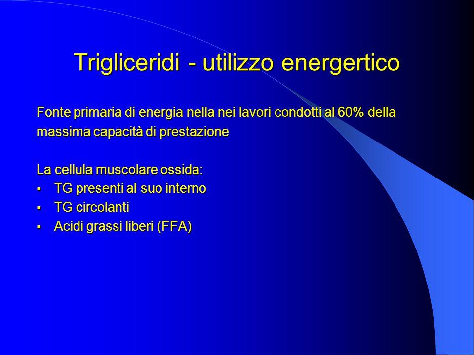 Trigliceridi - utilizzo energertico Fonte primaria di energia nella nei lavori condotti al 60% della massima capacità di prestazione La cellula muscolare ossida:  TG presenti al suo interno  TG circolanti  Acidi grassi liberi (FFA)