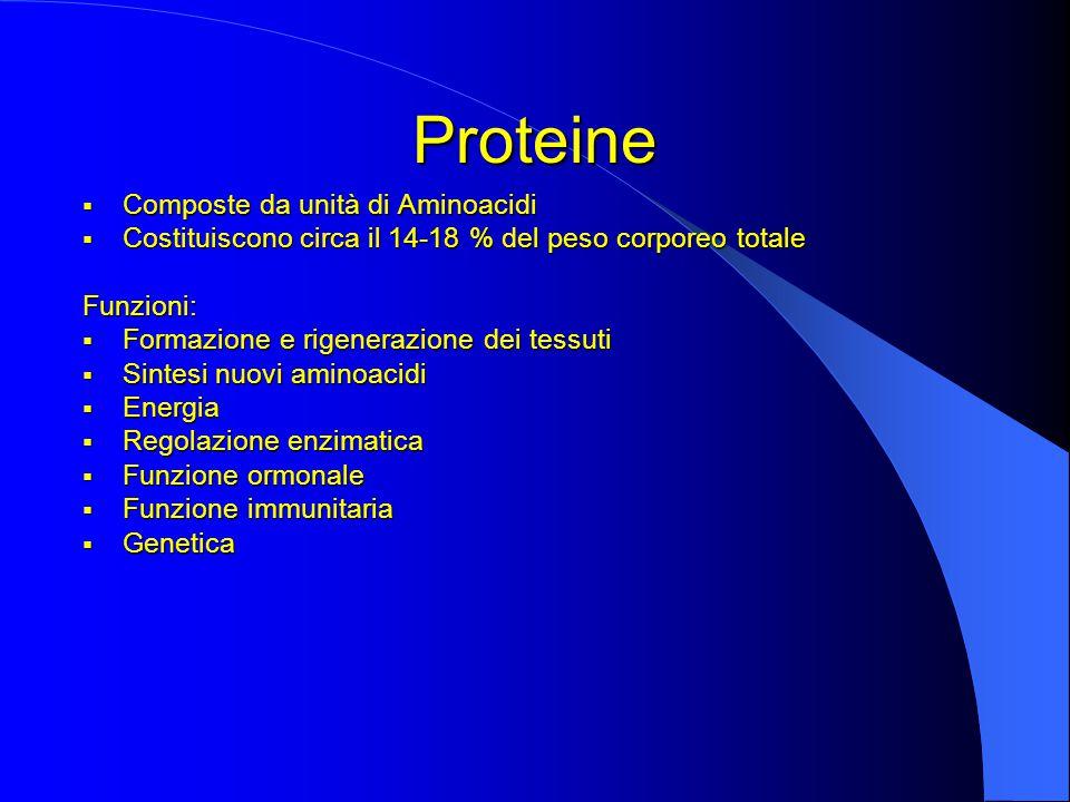 Proteine  Composte da unità di Aminoacidi  Costituiscono circa il 14-18 % del peso corporeo totale Funzioni:  Formazione e rigenerazione dei tessuti  Sintesi nuovi aminoacidi  Energia  Regolazione enzimatica  Funzione ormonale  Funzione immunitaria  Genetica
