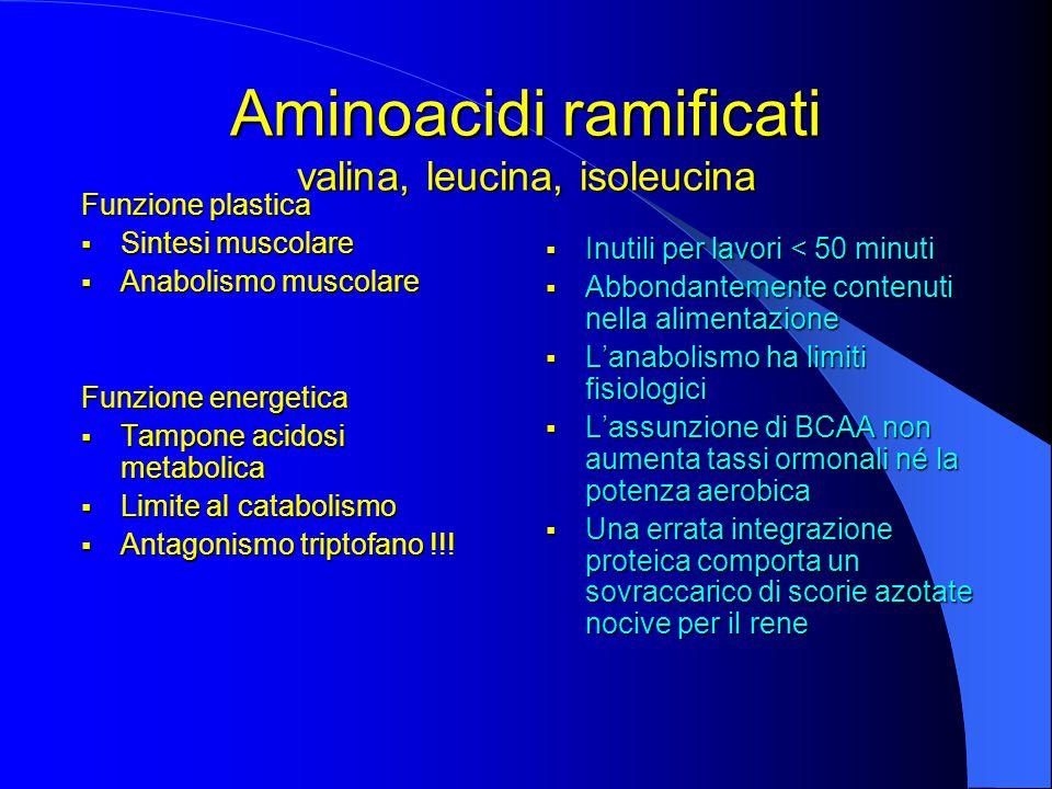 Funzione plastica  Sintesi muscolare  Anabolismo muscolare Funzione energetica  Tampone acidosi metabolica  Limite al catabolismo  Antagonismo triptofano !!.