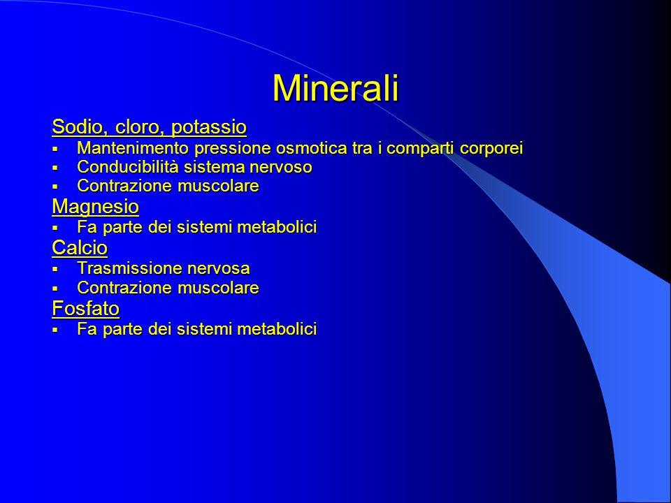 Minerali Sodio, cloro, potassio  Mantenimento pressione osmotica tra i comparti corporei  Conducibilità sistema nervoso  Contrazione muscolare Magnesio  Fa parte dei sistemi metabolici Calcio  Trasmissione nervosa  Contrazione muscolare Fosfato  Fa parte dei sistemi metabolici