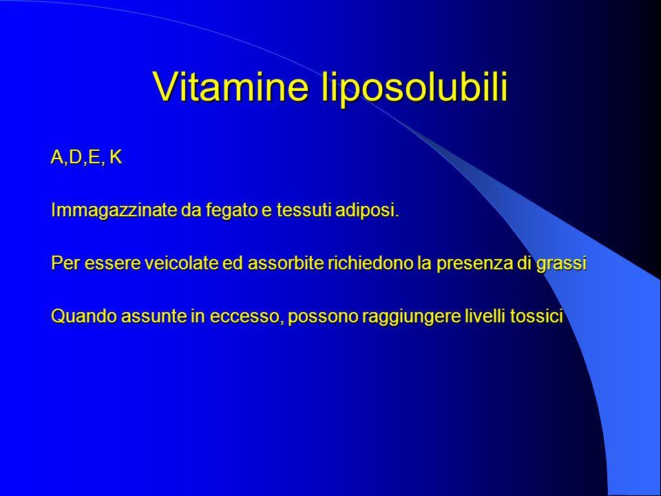 Vitamine liposolubili A,D,E, K Immagazzinate da fegato e tessuti adiposi.