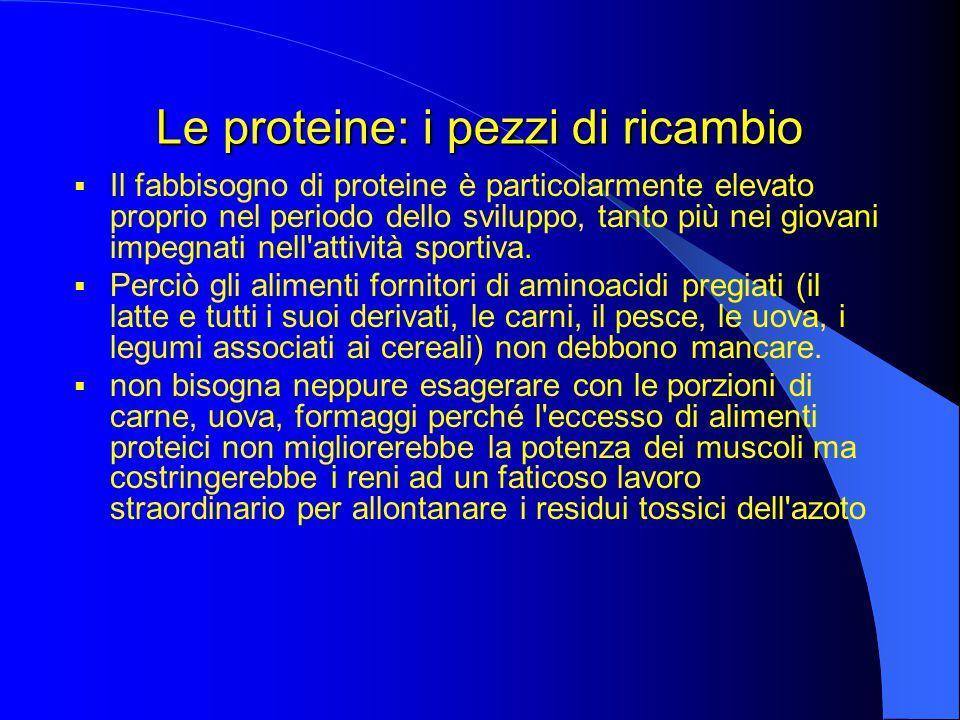 Le proteine: i pezzi di ricambio  Il fabbisogno di proteine è particolarmente elevato proprio nel periodo dello sviluppo, tanto più nei giovani impegnati nell attività sportiva.