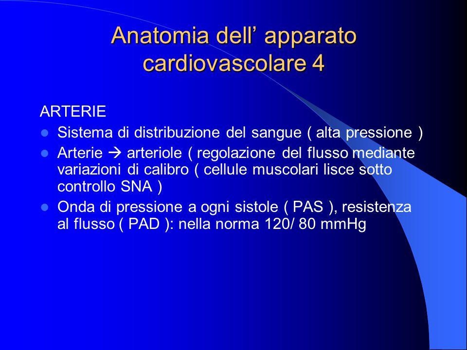 Anatomia dell' apparato cardiovascolare 4 ARTERIE Sistema di distribuzione del sangue ( alta pressione ) Arterie  arteriole ( regolazione del flusso mediante variazioni di calibro ( cellule muscolari lisce sotto controllo SNA ) Onda di pressione a ogni sistole ( PAS ), resistenza al flusso ( PAD ): nella norma 120/ 80 mmHg