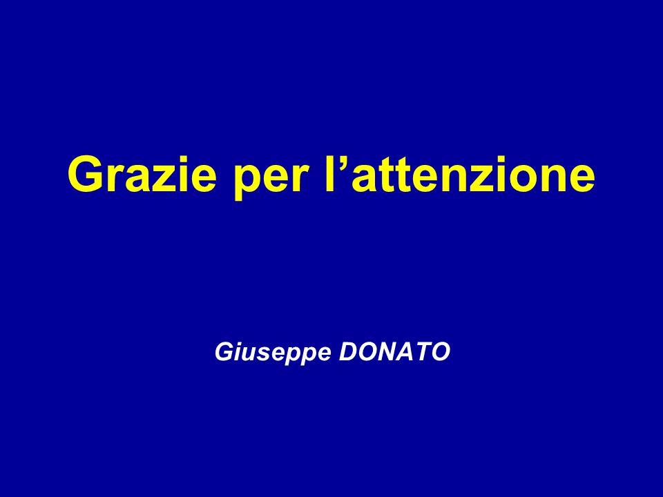 Grazie per l'attenzione Giuseppe DONATO