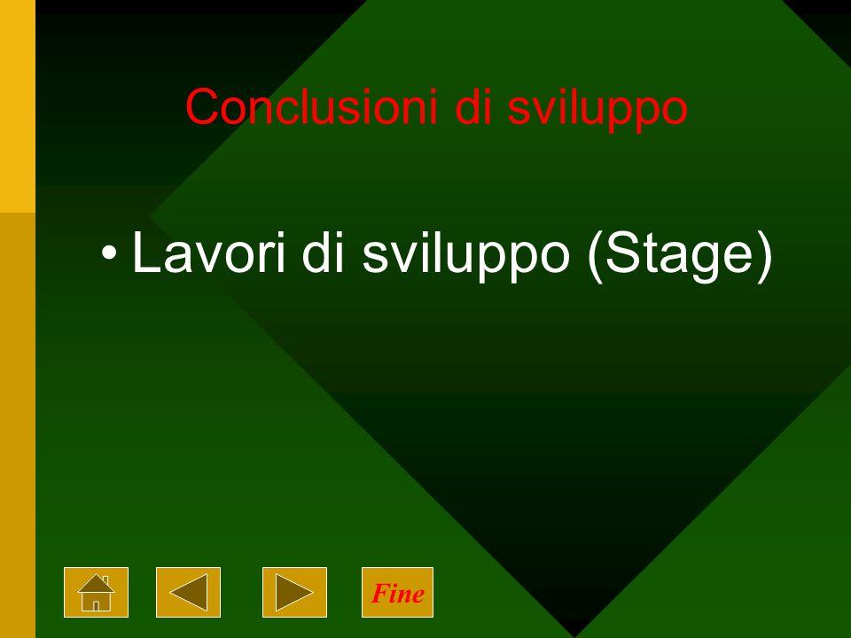 Conclusioni di sviluppo Lavori di sviluppo (Stage) Fine