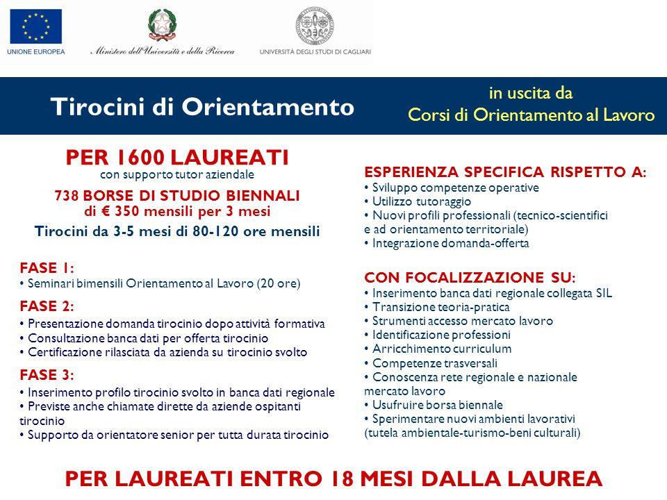Tirocini di Orientamento PER 1600 LAUREATI con supporto tutor aziendale 738 BORSE DI STUDIO BIENNALI di € 350 mensili per 3 mesi Tirocini da 3-5 mesi