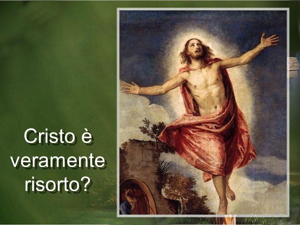 Leggendo i libri del Nuovo Testamento, troviamo diversi argomenti che confermano la verità della Risurrezione di Gesù,