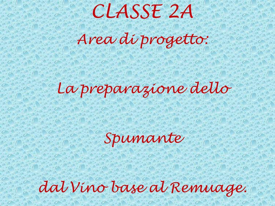 CLASSE 2A Area di progetto: La preparazione dello Spumante dal Vino base al Remuage.