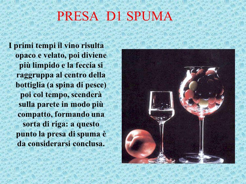 PRESA D1 SPUMA I primi tempi il vino risulta opaco e velato, poi diviene più limpido e la feccia si raggruppa al centro della bottiglia (a spina di pe