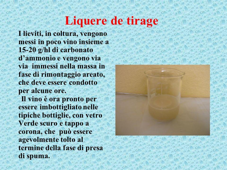 Liquere de tirage I lieviti, in coltura, vengono messi in poco vino insieme a 15-20 g/hl di carbonato d'ammonio e vengono via via immessi nella massa